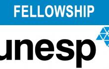 Fellowship em Laparoscopia Urológica e Endourologia na Unesp