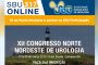 SBU online – número 317